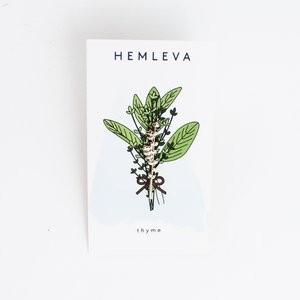 "Pin ""Thymian""von Hemleva"